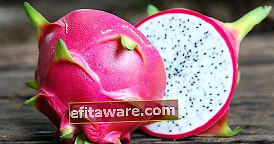 알면 깜짝 놀랄만 한 특별한 과일 : 용의 열매 (피 타야)