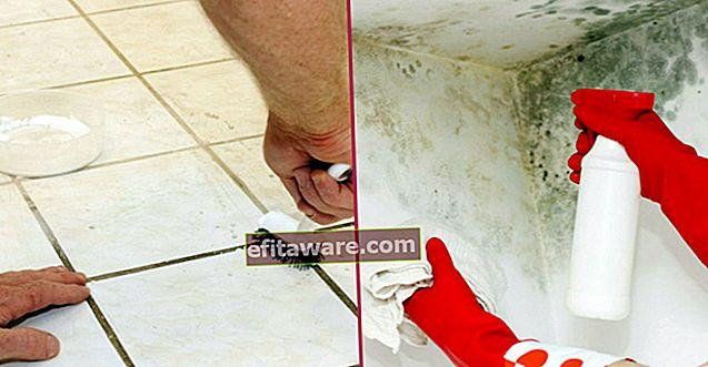 วิธีทำความสะอาดโรคราน้ำค้างบนผนังและภายในตู้อย่างง่ายดายด้วยวัสดุไม่กี่อย่าง?