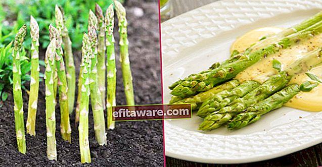 驚くべき利点からどのように調理されるかを知っておくべき味:アスパラガス