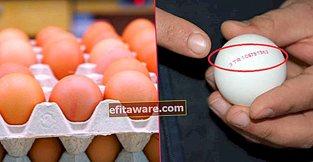 Oleh itu, Anda Tahu Apa Yang Anda Makan: Apa maksud Kod pada Telur?