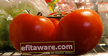 Mengapa Anda Tidak Perlu Sebenarnya Menyimpan Tomato Di Peti Sejuk?