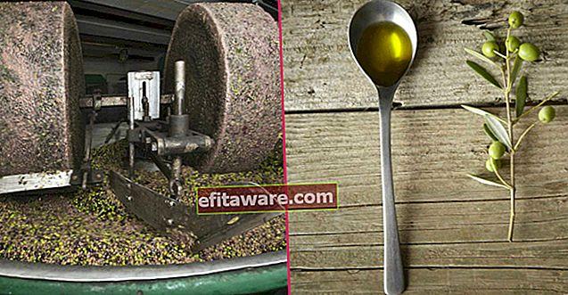 Memenuhi Bentuk Zaitun Paling Istimewa: Minyak Hidung (Stone Pressed Olive Oil)