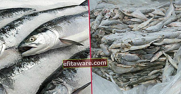 รักษารสชาติโดยไม่ประนีประนอมใน 5 ขั้นตอนง่ายๆ: เก็บปลาไว้ในช่องแช่แข็งได้อย่างไร?