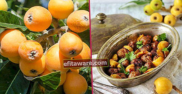 เมื่อคุณได้ยินข้อดีของพวกเขาคุณจะต้องกินทุกมื้อ: Maltese Plum (Loquat)