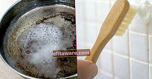 Prova che la miscela di bicarbonato di sodio e aceto è una panacea 11 informazioni pratiche